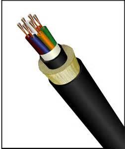 FTTH网络可以分段光缆厂家